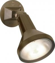 "Nuvo SF77/494 - 1 Light 8"" Par38 Floodlight"