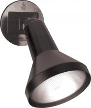 "Nuvo SF77/700 - 1 Light 8"" Par38 Floodlight"