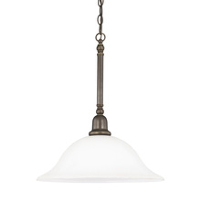 Sea Gull 66060-782 - One Light Pendant