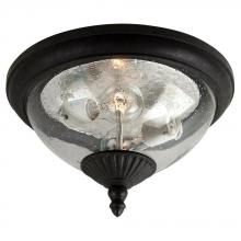 Sea Gull 88068-746 - Two Light Outdoor Ceiling Flush Mount